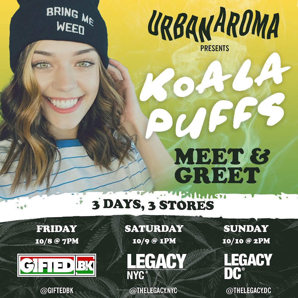 Legacy NYC Koala Puffs Meet & Greet Flier for October 9th event at Legacy NYC Store